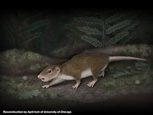 Ancient Rodentlike Creature Once Dominated Earth