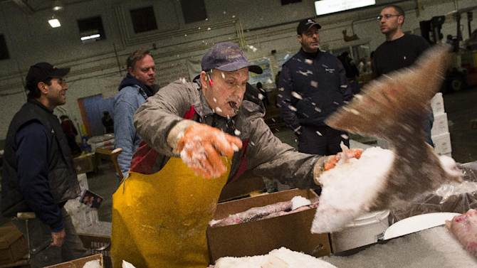 A fishmonger tosses a halibut onto a table at the Fulton Fish Market, Friday, March 29, 2013, in New York. The Fulton Fish Market, located in the Hunts Point neighborhood of the Bronx, is the world's largest after Tokyo. In this football-field size refrigerated building, time and money is measured in thousand-dollar pieces of salmon whose price-for-quality is negotiated on the spot. The product goes to the buyer instantly and is trucked to restaurants or retail vendors. (AP Photo/John Minchillo)