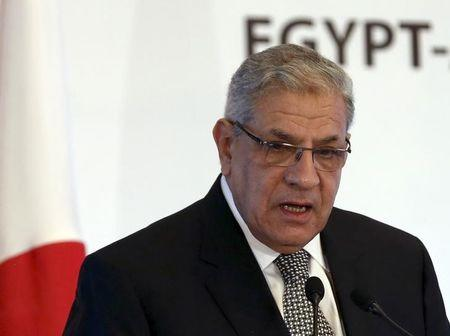 Egypt's cabinet approves long-awaited investment law -PM