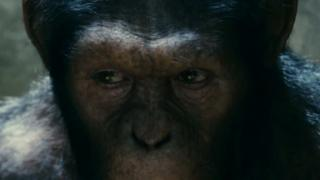 Rise Of The Planet Of The Apes (Trailer 1)