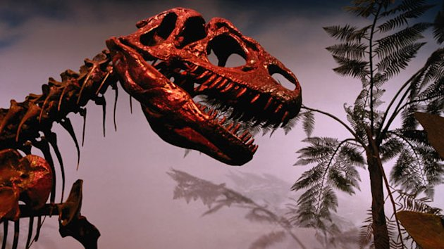 New Proof of How Dinosaurs Died (ABC News)