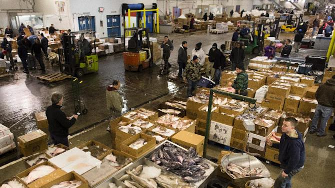 Fishmongers, buyers, and truck loaders roam the floor at the Fulton Fish Market, Friday, March 29, 2013, in New York. The Fulton Fish Market, located in the Hunts Point neighborhood of the Bronx, is the world's largest after Tokyo. In this football-field size refrigerated building, time and money is measured in thousand-dollar pieces of salmon whose price-for-quality is negotiated on the spot. The product goes to the buyer instantly and is trucked to restaurants or retail vendors. (AP Photo/John Minchillo)