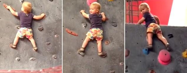 Toddler scales a rock wall without a harness