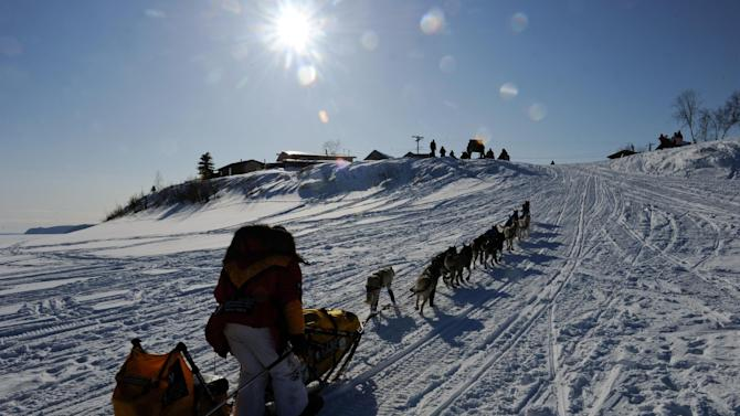Mitch Seavey drives off the Yukon River and into the Kaltag checkpoint of the Iditarod Trail Sled Dog Race on Saturday, March 10, 2012, in Kaltag, Alaska. (AP Photo/The Anchorage Daily News, Marc Lester)