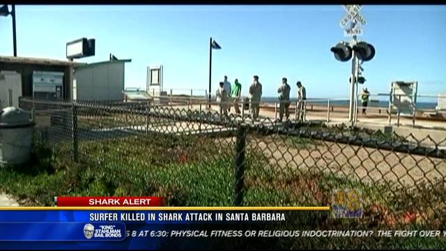 Surfer killed in shark attack in Santa Barbara