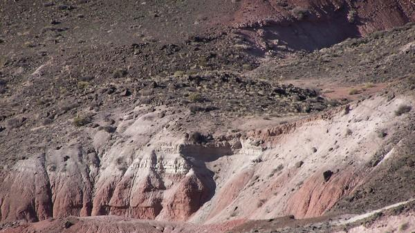 Grand Canyon Carved by Flood? Geologist Says No