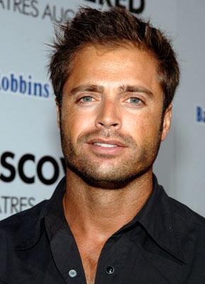 David Charvet at the Hollywood premiere of Lions Gate Films' Undiscovered