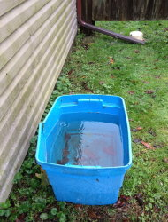 Rainwater collected from hurricane Sandy