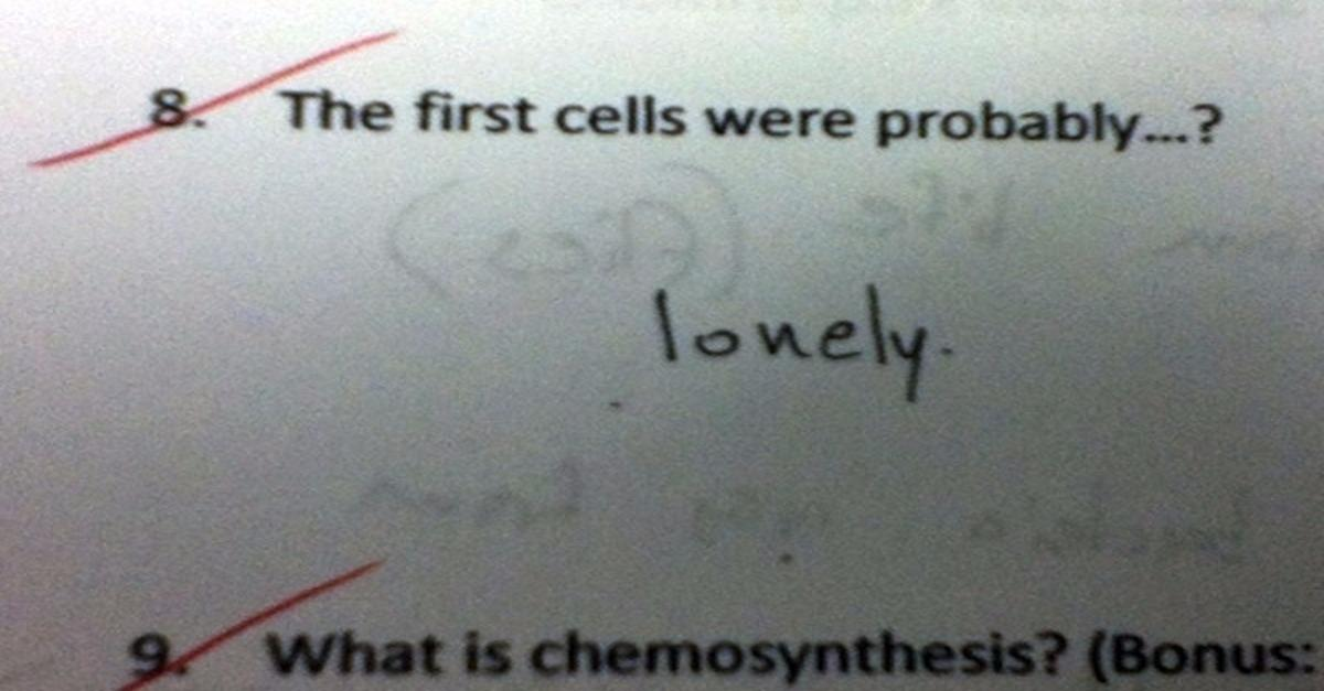 Most Hilarious Test Answers of All Time!