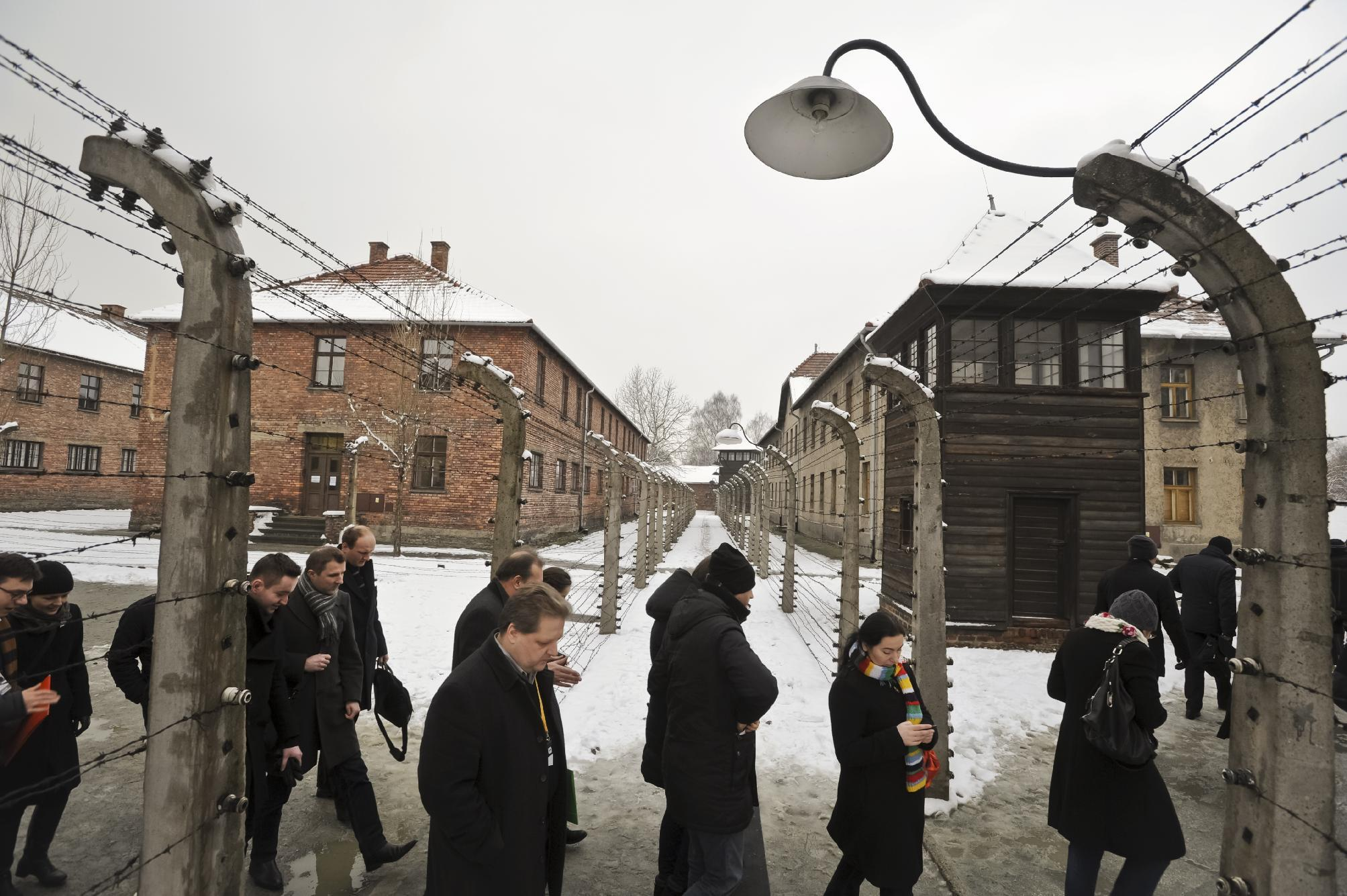 Dwindling group of survivors to mark Auschwitz 70 years on