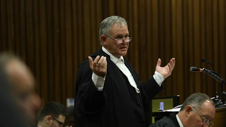 Defense attorney for Oscar Pistorius questions a witness about the events surrounding the shooting death of Pistorius' girlfriend Reeva Steenkamp, in court during his trial in Pretoria, South Africa, Tuesday, March 11, 2014. Pistorius is charged with the shooting death of Steenkamp, on Valentines Day in 2013. (AP Photo/Kevin Sutherland, Pool)