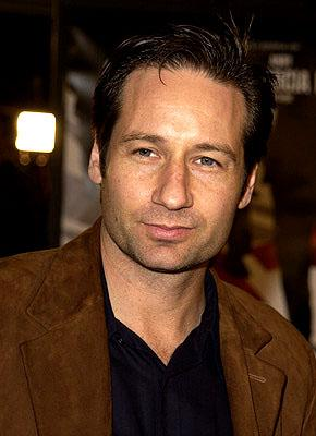 Premiere: David Duchovny at the Westwood premiere of Warner Brothers' Ocean's Eleven - 12/5/2001