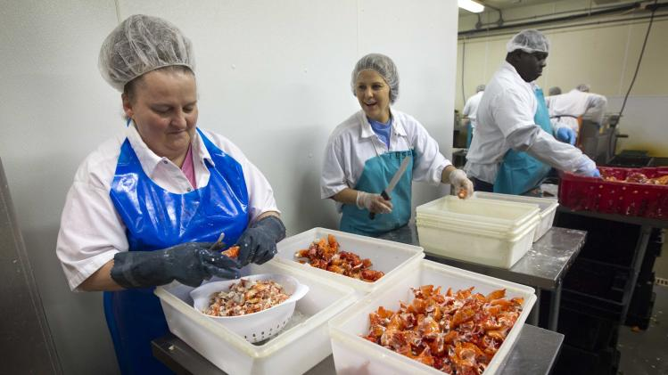 Maine moves to capture lobster-processing market