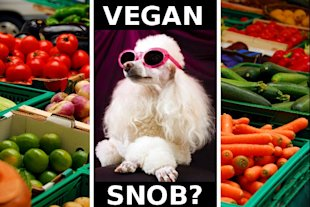 Veganism is Elite - Vegan Snob
