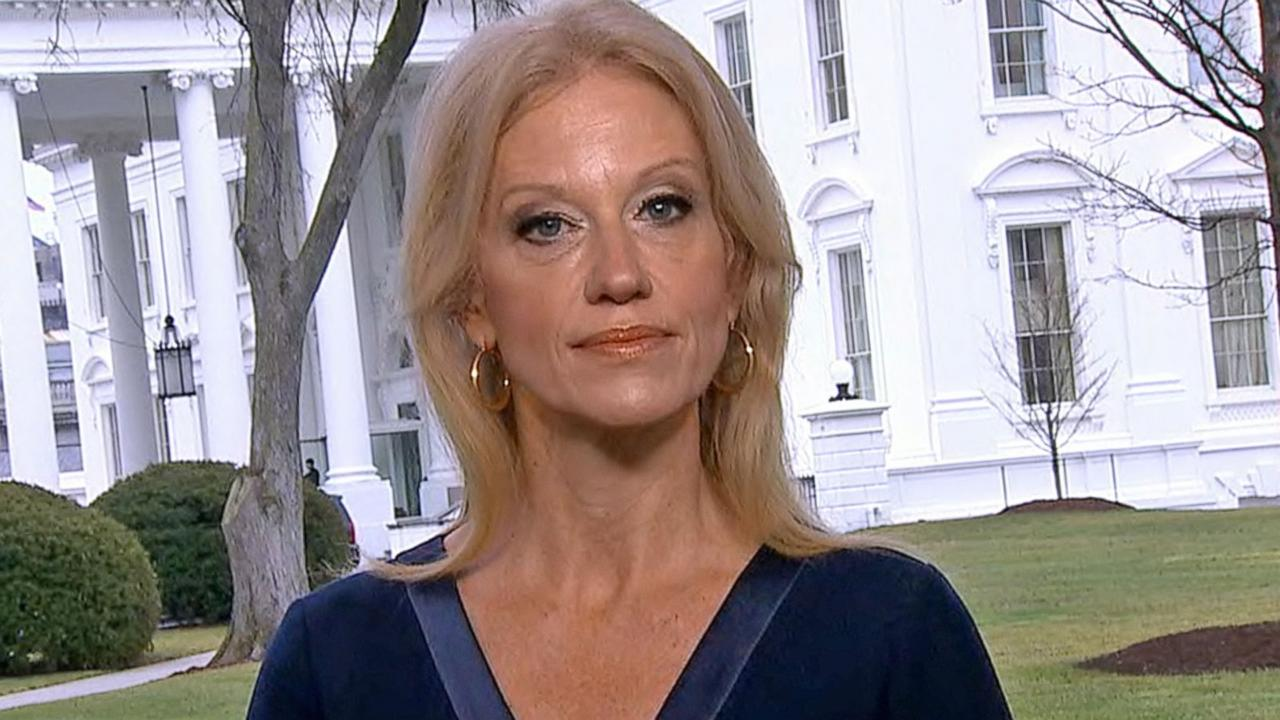 Kellyanne Conway 'Didn't See the Point' to Women's March on Washington