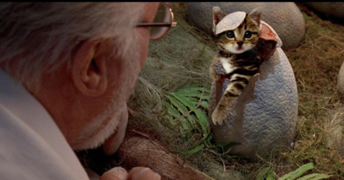 Jurassic World Improved With Kittens!