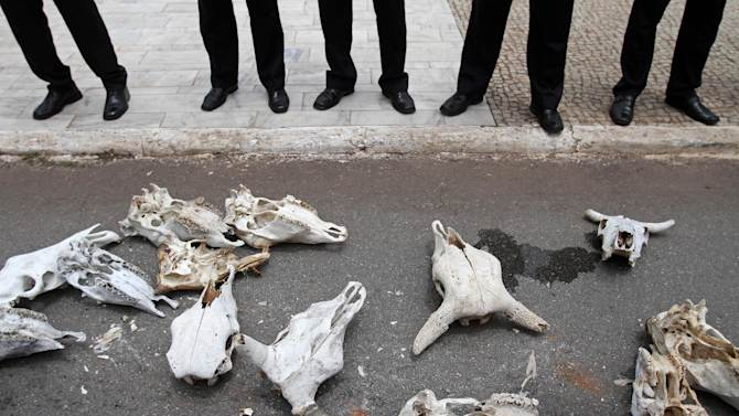 FILE - In this Dec. 4, 2012 file photo, oxen skulls brought by Brazilian farmers to represent animals killed by this year's drought lay at the feet of security agents outside Planalto presidential palace in Brasilia, Brazil. In 2012 many of the warnings scientists have made about global warming went from dry studies in scientific journals to real-life experience. (AP Photo/Eraldo Peres, File)