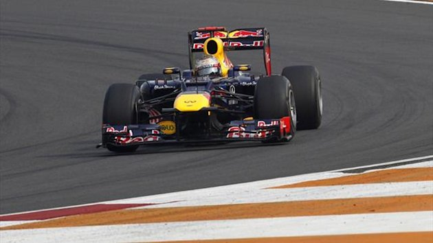 Red Bull's Sebastian Vettel drives during the second practice session of the Indian F1 Grand Prix (Reuters)