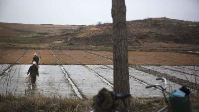 North Korean farmers work in a field inside the demilitarized zone which separates the two Koreas at Panmunjom, North Korea, Tuesday, April 23, 2013. (AP Photo/David Guttenfelder)