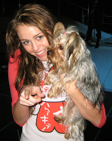 Miley Cyrus and pup, Roadie. Cyrus has adopted several pets from shelters.