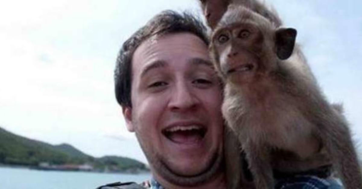 15 Animals With Better Selfie Game Than You