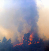 RETRANSMISSION TO CORRECT LOCATION - A wildfire burns out of control at Horsetooth Reservoir west of Fort Collins, Colo., on Friday, March 15, 2013. The 40-acre wildfire burning in gusty winds and warm weather was threatening homes west of Fort Collins on Friday and prompted about 50 people to leave the area. (AP Photo/Ed Andrieski)