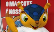 Armadilllo Picked As World Cup Mascot