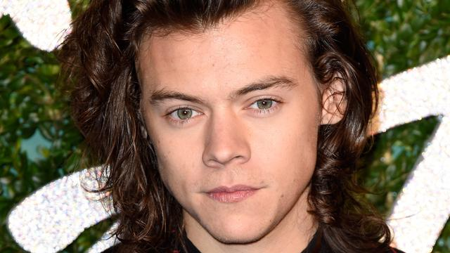 Harry Styles Turns 21: Relive His Cutest 6 Moments of the Past Year!