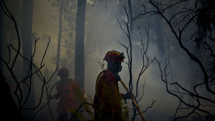 Firefighter combat a wildfire around Caramulo, central Portugal, on August 30, 2013