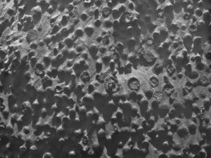 Strange Mystery Spheres on Mars Baffle Scientists