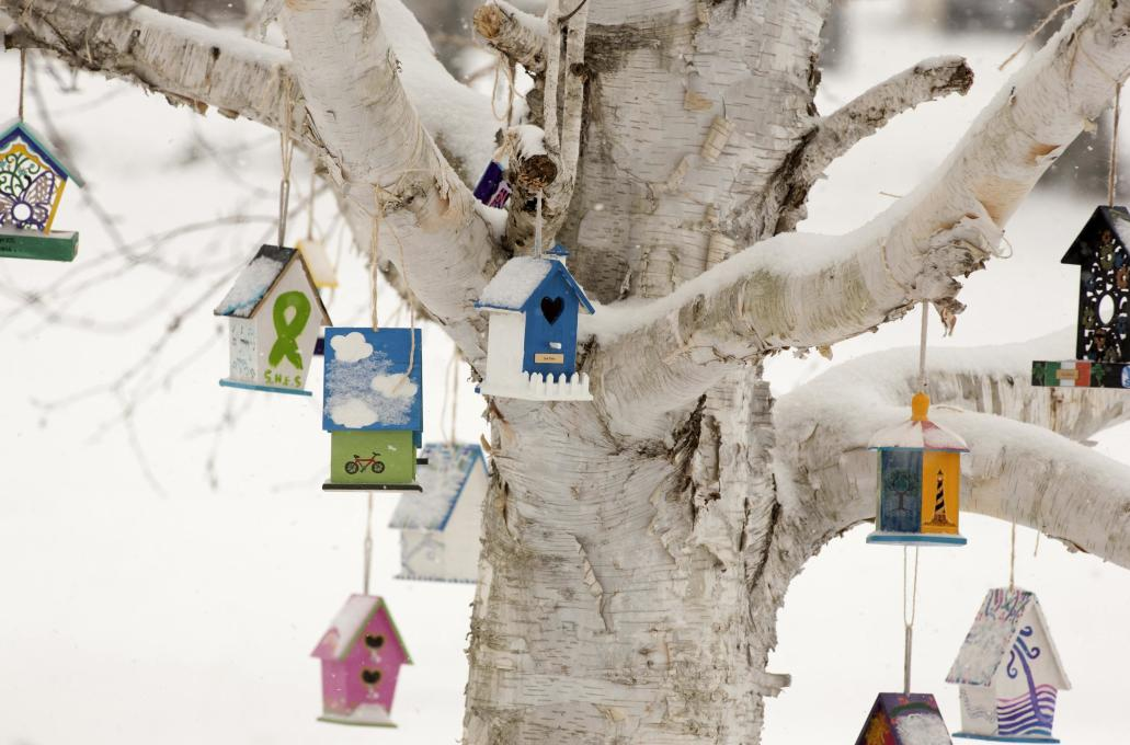 Obama marks Newtown school shooting anniversary with call for gun control
