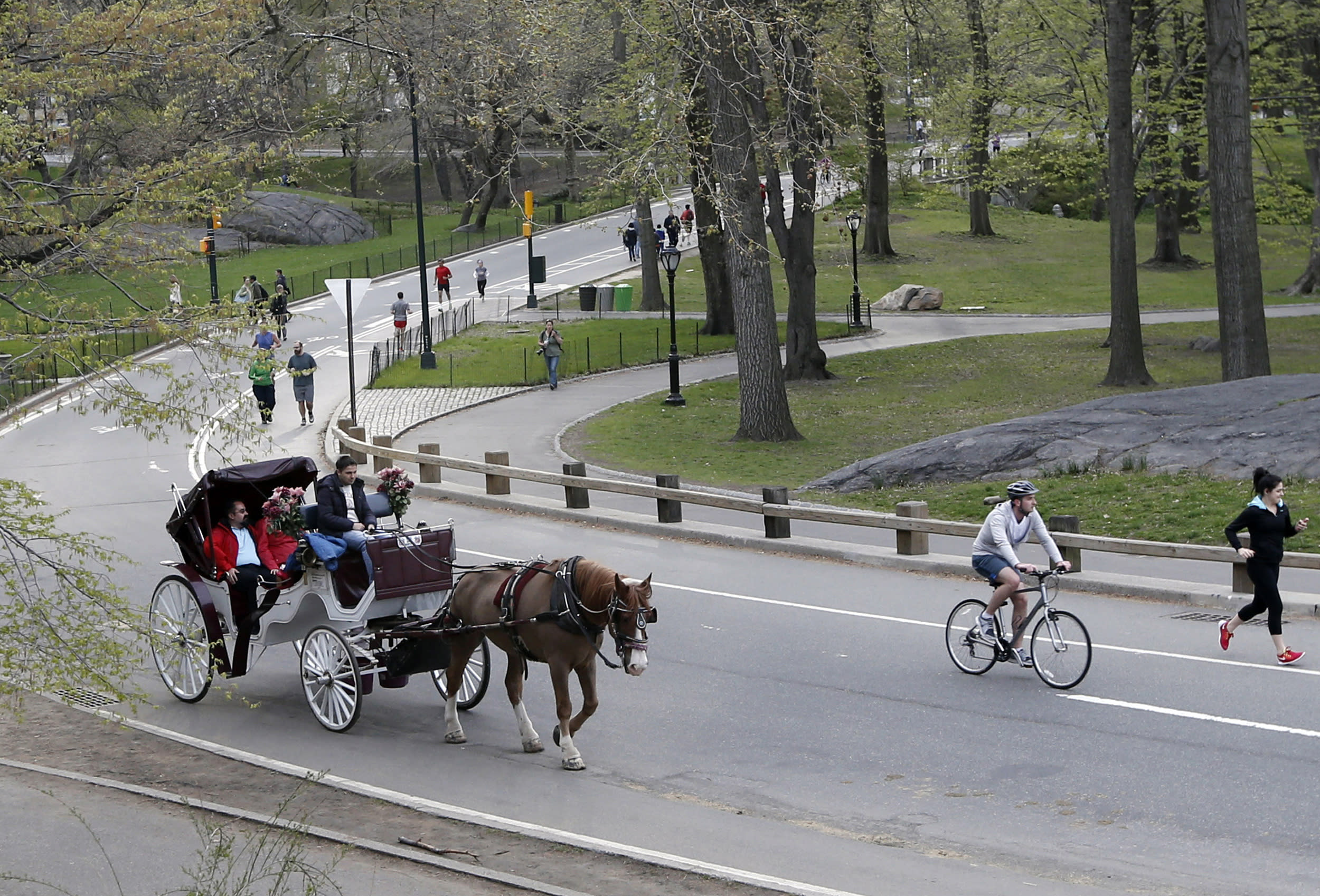 NYC pulls reins on plan for Central Park horse carriages