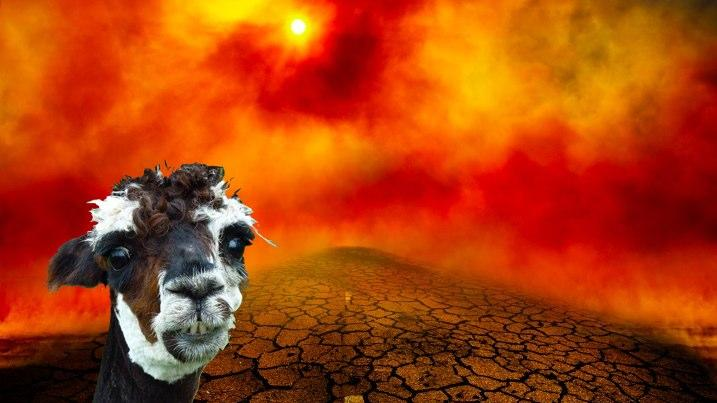 ALPACAlypse! The End of the World Is Shear