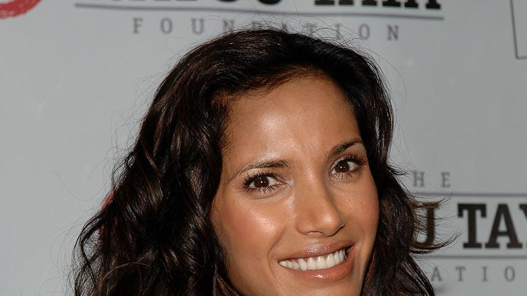 Padma Lakshmi attends the 5th Annual Wayuu Taya fundraising gala on June 5, 2008 at Bowery Hotel in New York.