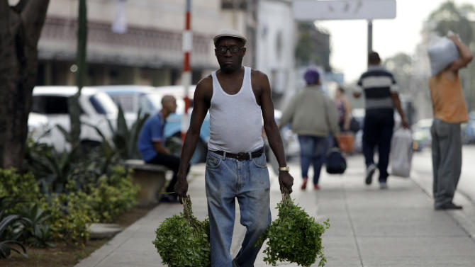 A man carries basil herbs as he walks in Havana, Cuba, Tuesday, Nov. 13, 2012. The U.N. General Assembly on Tuesday voted overwhelmingly to condemn the U.S. commercial, economic and financial embargo against Cuba for the 21st year in a row. The embargo was first enacted in 1960 following Cuba's nationalization of properties belonging to U.S. citizens and corporations. (AP Photo/Franklin Reyes)