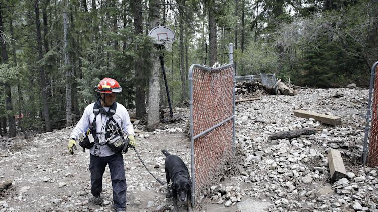 Mark LePino, of the Clark County Fire Department, searches flood debris with dog Cyril for possible victims Tuesday, July 29, 2014, on Mt. Charleston north of Las Vegas. LePino said no one was reported as missing but they do a secondary search with a dog just in case. (AP Photo/John Locher)