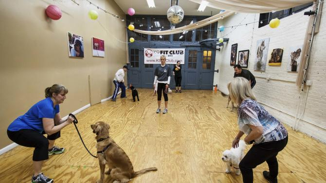 In this Feb. 14, 2013 photo, owners and their dogs are seen during a class at the K9 Fit Club's Chicago location. (AP Photo/Teresa Crawford)