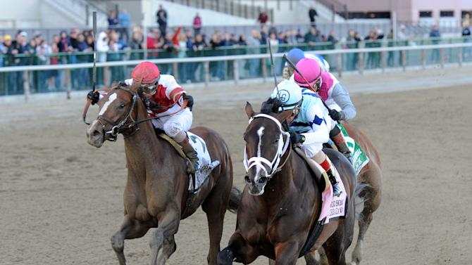 In this photo provided by the New York Racing Association, Verrazano, front right, with John Velazquez aboard, captures The Grade I Wood Memorial stakes horse race at Aqueduct Race Track in New York, Saturday, April 6, 2013. Normandy Invasion was second and Vyjack was third. (AP Photo/New York Racing Association)