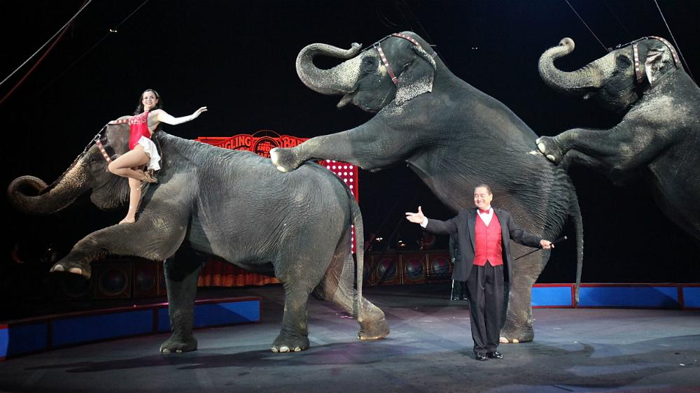 Ringling Bros. Circus to Drop Elephant Acts By 2018