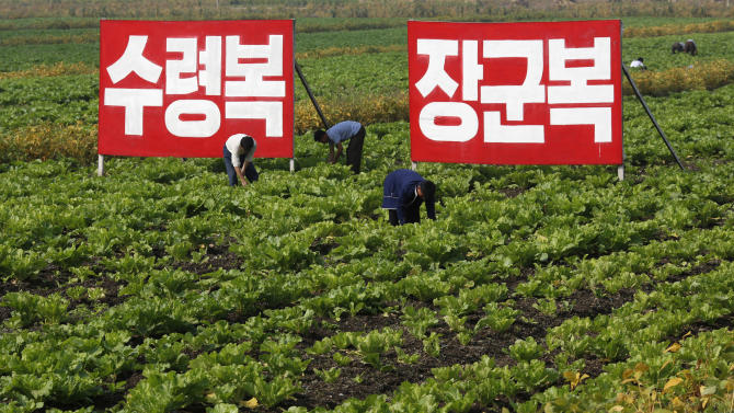 "In this Sunday, Sept. 23, 2012 photo, North Korean farmers work at Migok Cooperative Farm in Sariwon, North Hwanghae Province, North Korea. Farmers would be able to keep a bigger share of their crops under proposed changes aiming to boost production by North Korea's collective farms, which have chronically struggled to provide enough food for the country's 24 million people. The signs read ""Fortune of holding great leader (Kim Il Sung) as father,"" left, and ""Fortune of holding great general (Kim Jong Il) as father."" (AP Photo/Vincent Yu)"