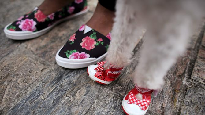 The feet of a woman and her dog are seen before getting blessed by a priest at Sao Francisco de Assis (Saint Francis of Assis) Church in Sao Paulo
