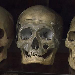 Killer History on Display at Museum of Death