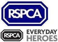 Everyday Heroes Protecting Animals from Abuse