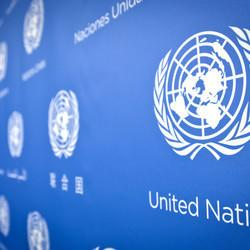 Rights Groups: It's Time For The UN To Reform Its Global Drug Policies