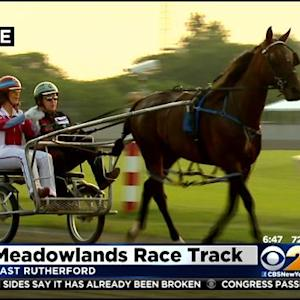 11 Horses To Compete In The Hambletonian At Meadowlands Race Track