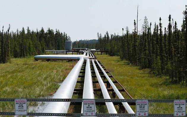 Oil, steam and natural gas pipelines run through the forest at the Cenovus Foster Creek SAGD oil sands operations near Cold Lake, Alberta in the US.  Picture: REUTERS