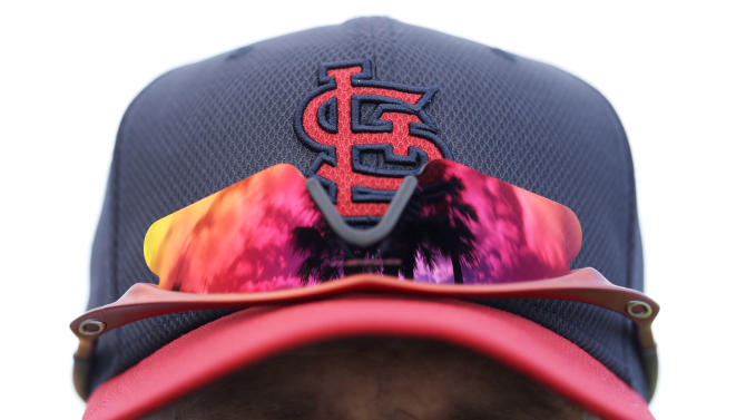 A palm tree is reflected on the sunglasses of St. Louis Cardinals manager Mike Matheny before the start of spring training baseball, Monday, Feb. 11, 2013, in Jupiter, Fla. (AP Photo/Julio Cortez)