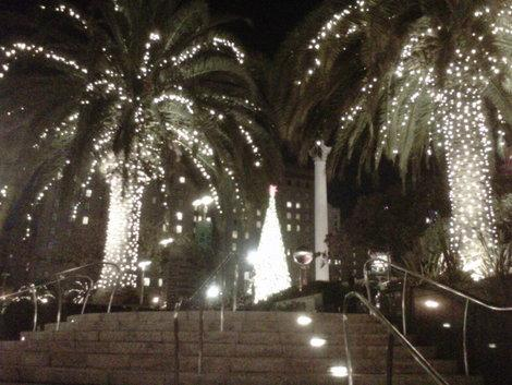 Palm trees dressed for Christmas in Union Square, San Francisco. (Photo courtesy of Laurie Jo Miller Farr.)