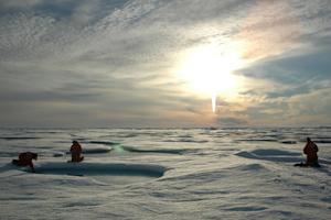 Arctic Going Green from Warming, Study Finds
