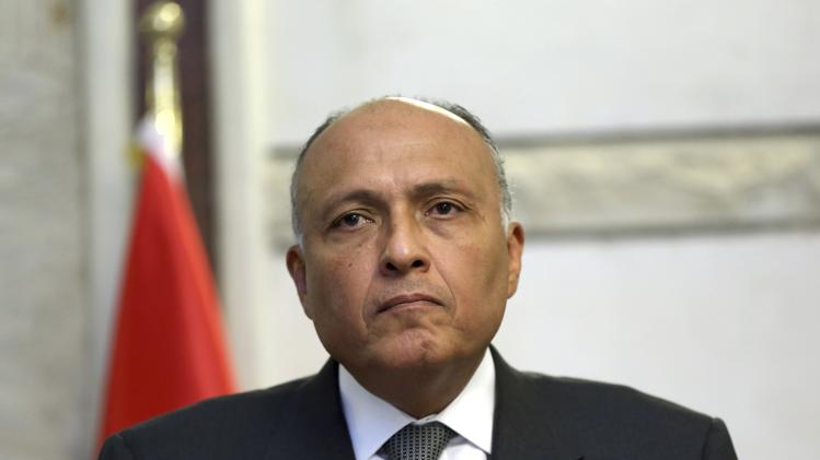 Egypt's Foreign Minister Sameh Shukri attends a joint news conference with Iraq's Deputy Prime Minister for Energy Hussain al-Shahristani in Baghdad